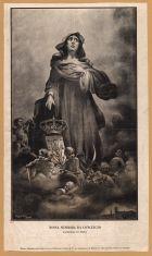 ilustração Nossa Senhora da Conceição (fonte: BNP)